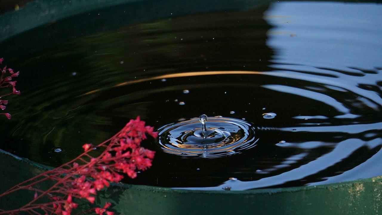 Besparing drinkwater door regentonnen actie