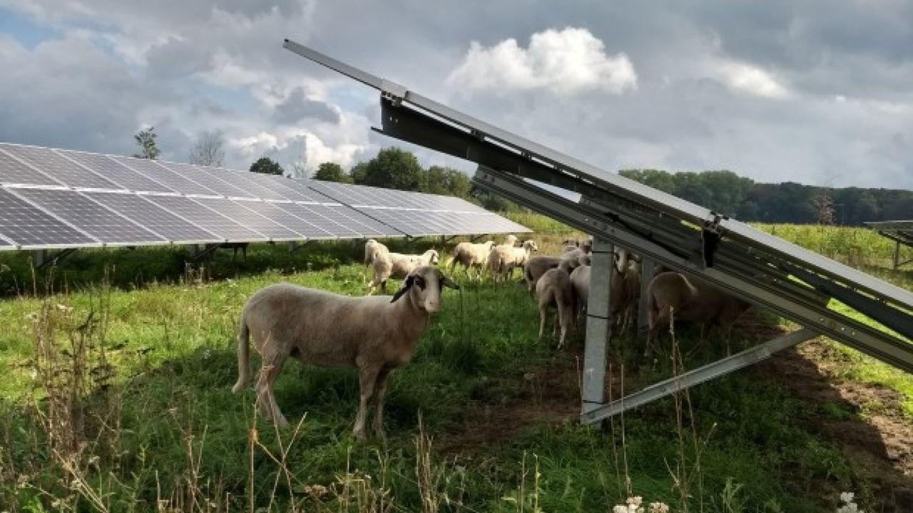 Regiogemeenten eens over duurzame energie